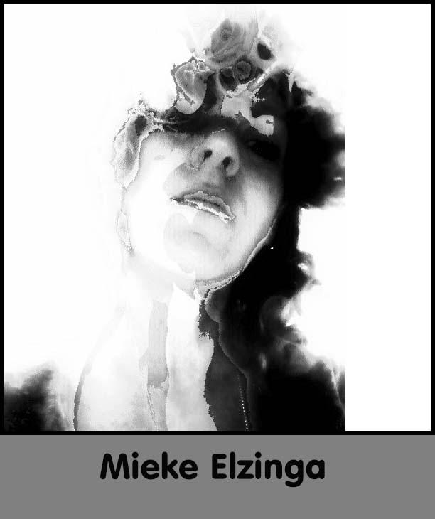 elzinga2